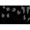Νεράϊδες, Αυτοκόλλητο τοίχου , κοντινό