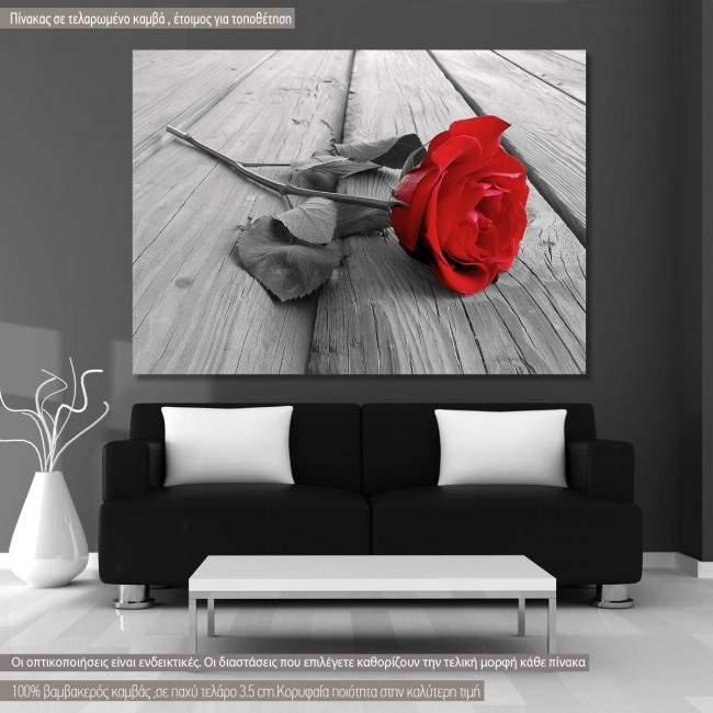 Πίνακας σε καμβά, τριαντάφυλλο, Rose on wood multicolor
