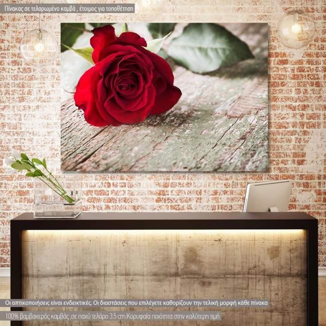 Rose on wood, πίνακας σε καμβά με τριαντάφυλλο