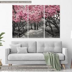 Πίνακας σε καμβά, Ανθισμένα δέντρα, Pink Blossoms central park, τρίπτυχος
