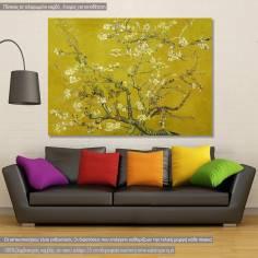 Πίνακας ζωγραφικής, Blossoming almond tree (yellow), van Gogh Vincent, αντίγραφο σε καμβά